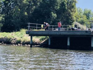 Maribyrnong Native Fish Revival Project Recreational Users Survey