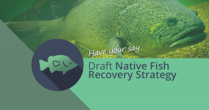 Draft Native Fish Recovery Strategy