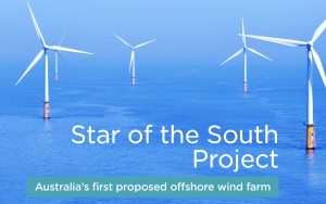 Star of the South Offshore Wind Farm Project