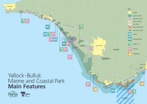 Have Your Say on Access for Yallock-Bulluk Marine and Coastal Park