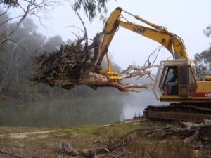 Management of Instream Woody Habitat