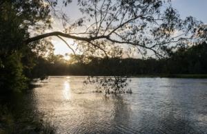 VRFish pledges support for Goulburn Broken Regional Catchment Strategy!